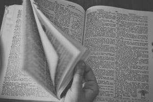 Dizionari e vocabolari