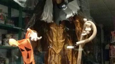 Halloween-strega