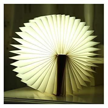 Lampada book light