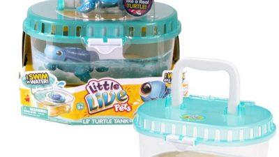 Tartaruga little live pets