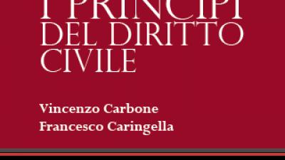 I PRINCIPI DEL DIRITTO CIVILE 2019